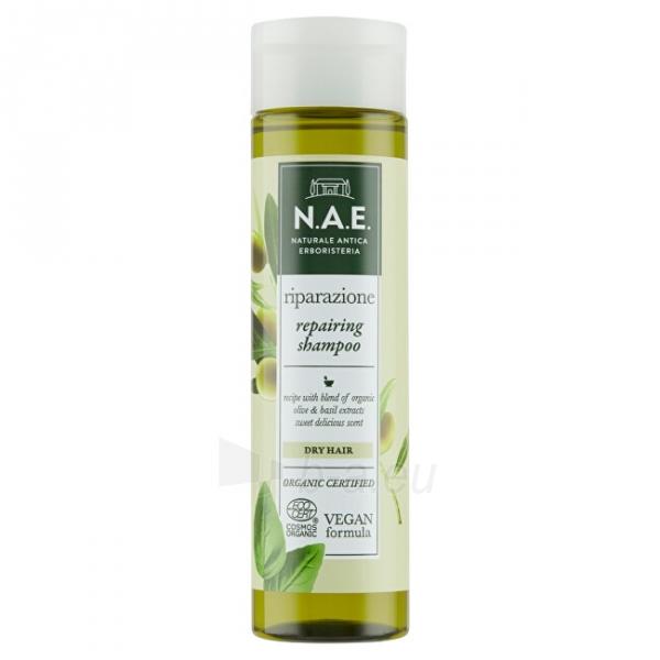 Regeneruojantis šampūnas sausiems plaukams N.A.E. Riparazione 250 ml Paveikslėlis 1 iš 10 310820231631