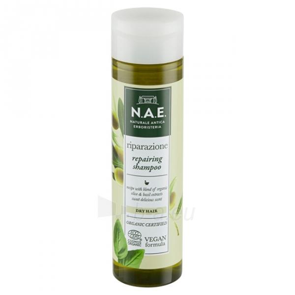 Regeneruojantis šampūnas sausiems plaukams N.A.E. Riparazione 250 ml Paveikslėlis 9 iš 10 310820231631