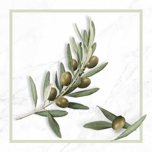 Regeneruojantis šampūnas sausiems plaukams N.A.E. Riparazione 250 ml Paveikslėlis 8 iš 10 310820231631