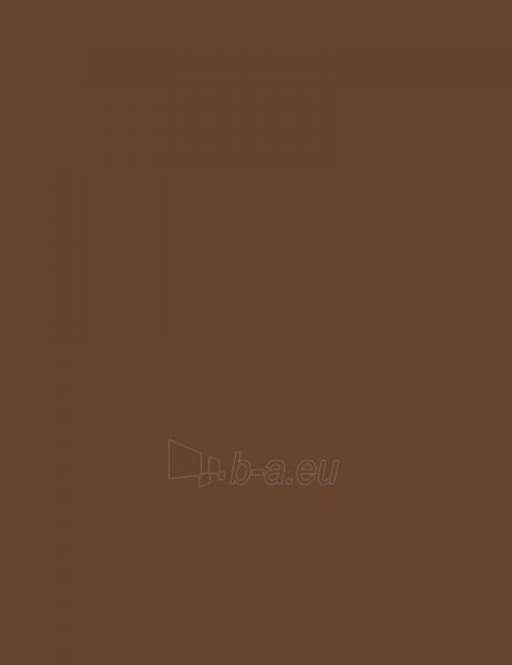 Rimmel London Eyebrow Pencil Cosmetic 1,4g 001 Dark Brown Paveikslėlis 1 iš 2 2508713000174