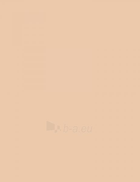 Rimmel London Hide The Blemish Concealer Stick 4,5g Soft Honey Paveikslėlis 1 iš 3 250873200117