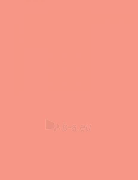 Rimmel London Lasting Finish Lipstick Cosmetic 4g 206 Nude Pink Paveikslėlis 2 iš 2 250872200321