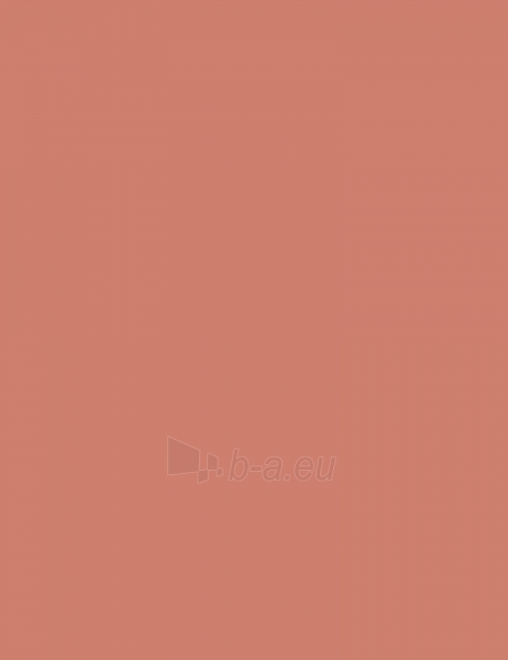Rimmel London Soft Colour Blush Cosmetic 4,5g (Shade 190 Coral) Paveikslėlis 1 iš 2 250873400045