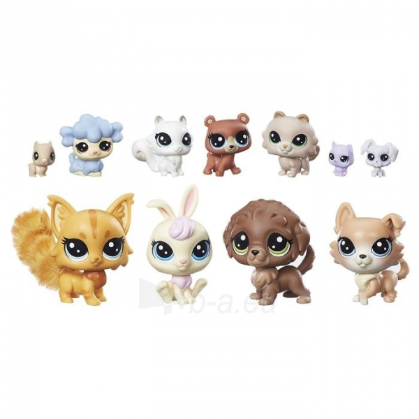 Rinkinys B9754 Littlest Pet Shop Lps Pet Pack Cuddliest Paveikslėlis 2 iš 2 310820146733