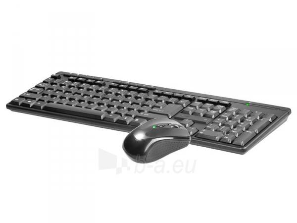 Rinkinys Klaviatūra+ pelė TRACER BlackJack USB, US Paveikslėlis 3 iš 3 250255701084