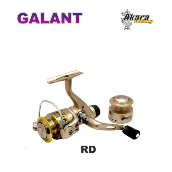 Ritė AKARA Galant RD 20A 3+1BB Paveikslėlis 1 iš 1 310820042166