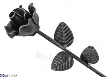 Rožė 300*70, L09ZL186 Paveikslėlis 1 iš 1 310820026482