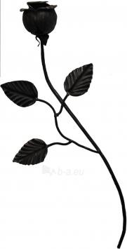Rožė didelė 450*160, L09ZL026 Paveikslėlis 1 iš 3 310820026326