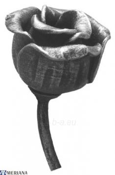 Rožės žiedelis 60*45, L09ZL029 Paveikslėlis 1 iš 1 310820026371