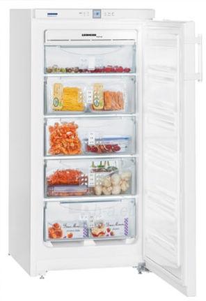 Freezer LIEBHERR GNP 1956 (-22)  Paveikslėlis 1 iš 1 250116002440