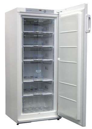 Freezer Snaigė F 22SM-T10002 Paveikslėlis 1 iš 1 250116001145