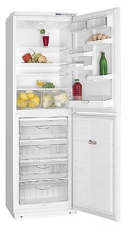 Refrigerator ATLANT XM 6023-031 A+  Paveikslėlis 1 iš 1 250116001745