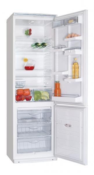 Refrigerator ATLANT XM 6024-031 A+ Paveikslėlis 1 iš 1 250116001804