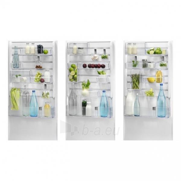 Refrigerator Electrolux EN3454MFX Paveikslėlis 3 iš 7 250116002668
