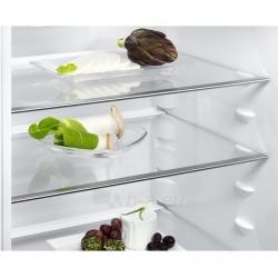 Šaldytuvas Electrolux EN3853MOX Paveikslėlis 5 iš 5 250116002396