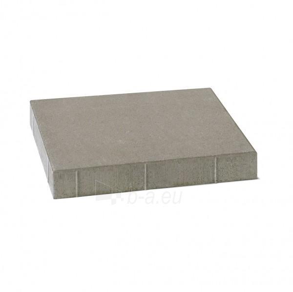 Sidewalk brick ŠP5-8, spalvotos (BM) Paveikslėlis 1 iš 6 310820005679