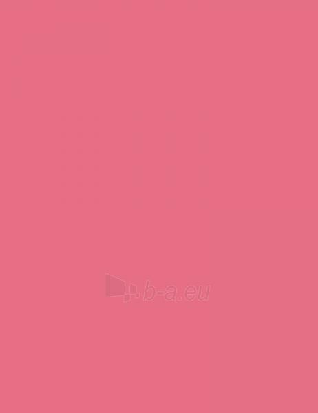 Sally Hansen Complete Salon Manicure Cosmetic 14,7ml 510 I Pink I Can Paveikslėlis 1 iš 2 250874000623