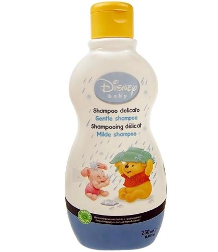 shampoo hair Disney Baby Gentle Shampoo Cosmetic 250ml Paveikslėlis 1 iš 1 30024900043