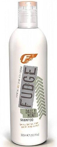 Šampūnas plaukams Fudge Daily Mint Shampoo Cosmetic 300ml Paveikslėlis 1 iš 1 250830100041