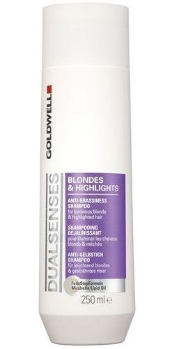 Šampūnas plaukams Goldwell Dualsenses Blondes Highlights Shampoo Cosmetic 1500ml Paveikslėlis 1 iš 1 250830100729