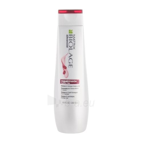 Šampūnas plaukams Matrix Biolage Repairinside Shampoo Cosmetic 250ml Paveikslėlis 1 iš 1 310820039422
