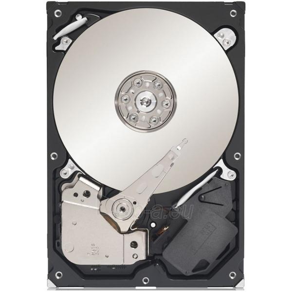 SEAGATE HDD Desktop Barracuda 7200 (3.5'',500GB,16MB,SATA III-600) Paveikslėlis 1 iš 1 250255510805