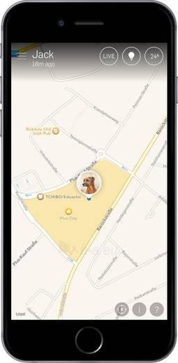 Sekiklis Tractive GPS TRAPI1 Pink Edition Paveikslėlis 7 iš 8 310820205144