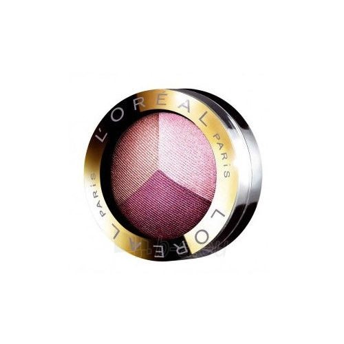 L´Oreal Paris Trio Pro Eyeshadow Cosmetic 6g (Stay Ultra Violet) Paveikslėlis 1 iš 1 250871200325