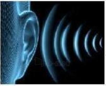 Signalinė spyna (alarm) trosinė 120 cm Paveikslėlis 4 iš 4 310820011977