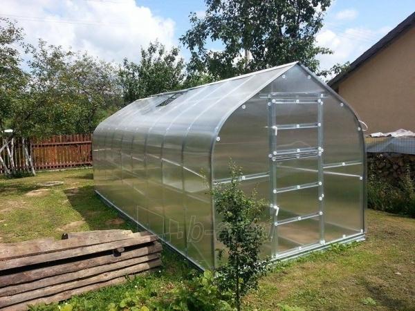 Greenhouse Standart KLASIKA 20 with substructure, 2,5x8 (20 m2) su 6 mm.polikarbonato danga Paveikslėlis 4 iš 5 238700000217