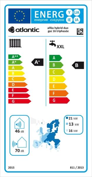 Šilumos siurblys oras/vanduo Atlantic Alfea Excellia Hybrid Duo Gas TRI 16 Paveikslėlis 2 iš 2 310820165623