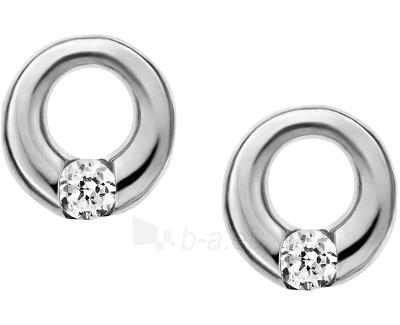 Skagen earrings SKJ0311040 Paveikslėlis 1 iš 1 310820041206