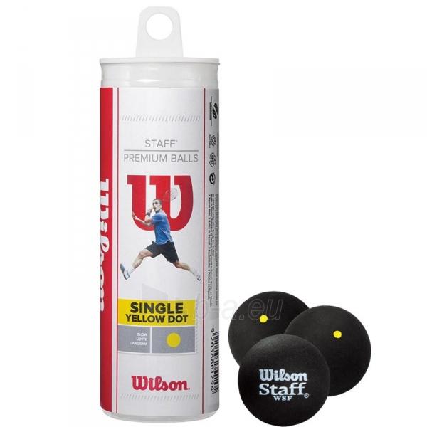 Skvošo kamuoliukas Wilson yellow dot Paveikslėlis 1 iš 1 310820217839