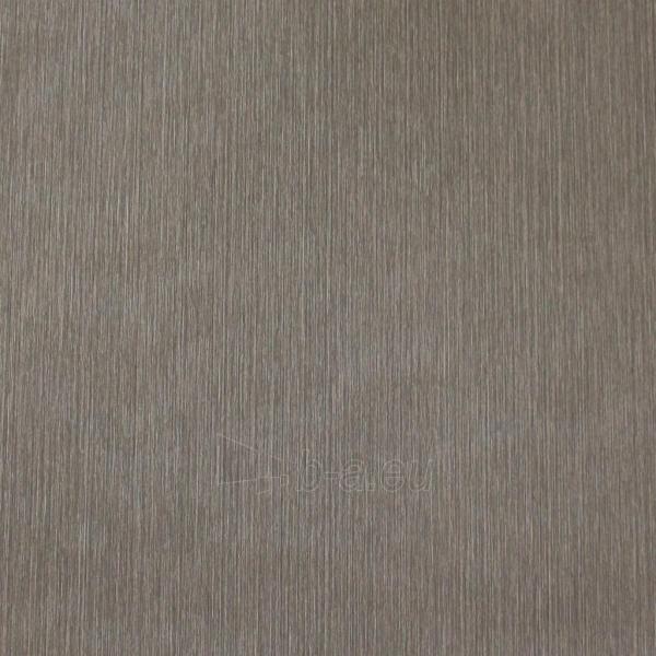 SP18201 SPECTRUM, 10,05x0,53m,brown wallpaper, Metyl. Vlies Paveikslėlis 1 iš 1 310820015485