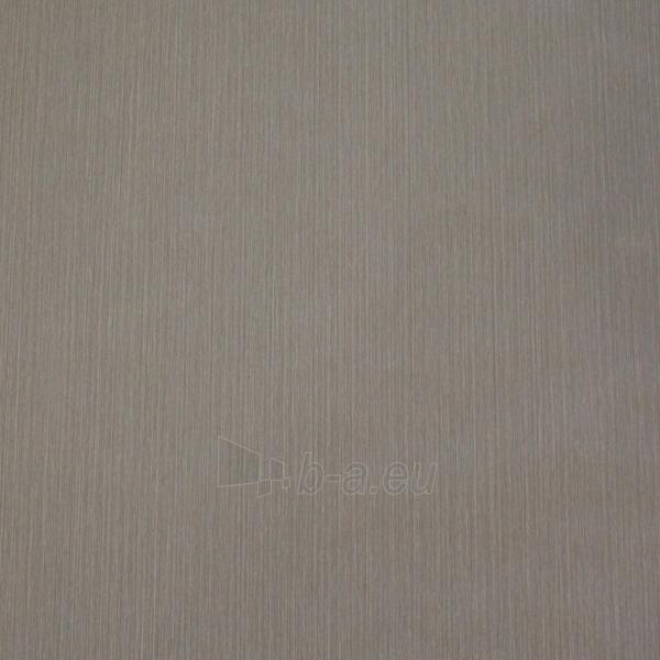SP18206 SPECTRUM, 10,05x0,53m,grey wallpaper, Metyl. Vlies Paveikslėlis 1 iš 1 310820015486