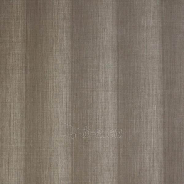 SP18231 SPECTRUM, 10,05x0,53m, browns juostomis tapetas, Metyl. Vlies Paveikslėlis 1 iš 1 310820015487