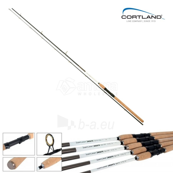 Spiningas Cortland Desire Spin, 2,3m, 10-25g Paveikslėlis 1 iš 1 310820162105