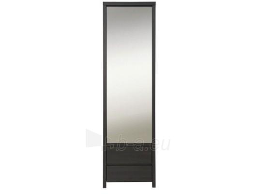 Spinta su veidrodžiu SZF1D2SP Paveikslėlis 1 iš 2 250403151022