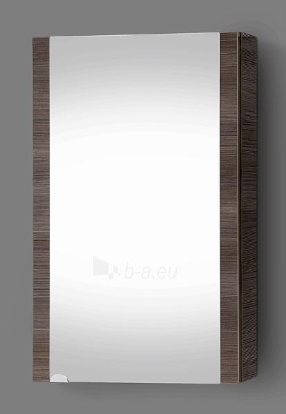 Spintelė su veidrodžiu Riva SV47-11 Paveikslėlis 1 iš 3 310820055983
