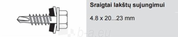 Sraigtai lakštų sujungimui Ruukki 4.8 x 20...23 mm spalvoti (100 vnt./pak.) Paveikslėlis 1 iš 1 310820026914