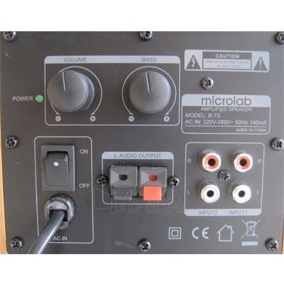 Stereo kolonėlės Microlab B73 2.0, 20W, 35-20000Hz, MDF Paveikslėlis 3 iš 3 250255800596