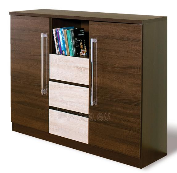 Chest of drawers for the living room DX1 Paveikslėlis 1 iš 2 250417000046