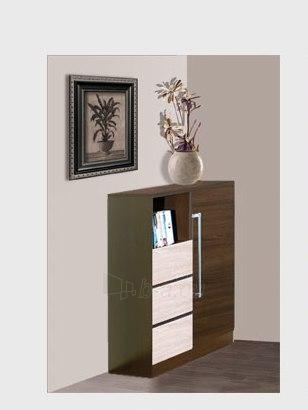 Chest of drawers for the living room DY1 Paveikslėlis 1 iš 1 250417000141