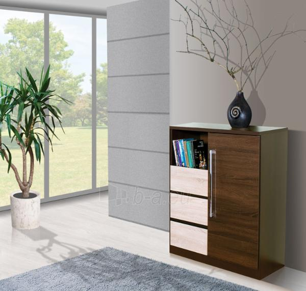 Chest of drawers for the living room DY3 Paveikslėlis 3 iš 3 250417000142