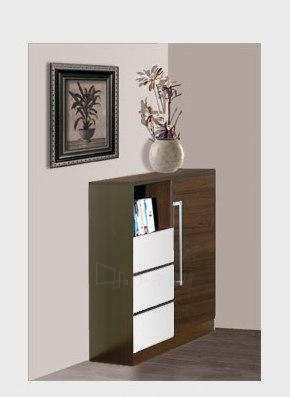 Chest of drawers for the living room DY3 Paveikslėlis 2 iš 3 250417000142