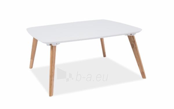 Svetainės staliukas Alvik 90x90x42 Paveikslėlis 1 iš 1 310820018306