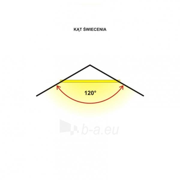 Šviestuvas ART External lamp LED 20W,SMD,IP65, AC80-265V,black, 4000K-W Paveikslėlis 3 iš 4 310820049432