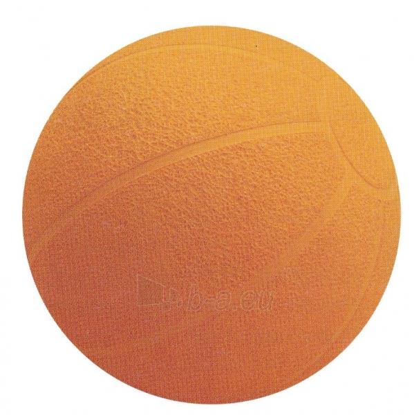 Svorinis kamuolys 2kg Paveikslėlis 1 iš 1 310820027588