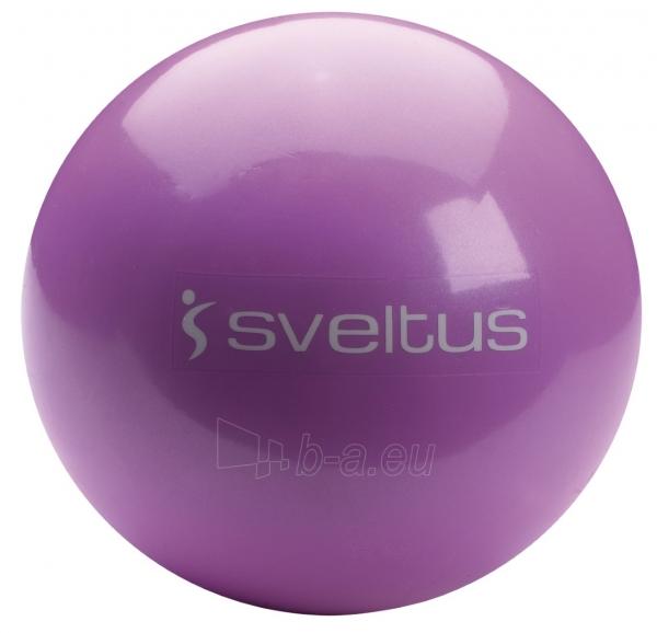 Svorinis kamuolys Sveltus 2kg Paveikslėlis 1 iš 1 310820027567