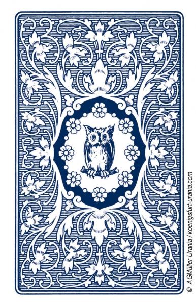 Taro Kortos Blue Owl Paveikslėlis 4 iš 7 310820142658